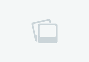 Sea Ray - 215 Express Cruiser