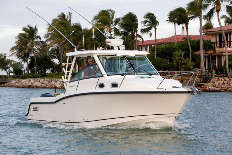Boston Whaler - 315 Conquest