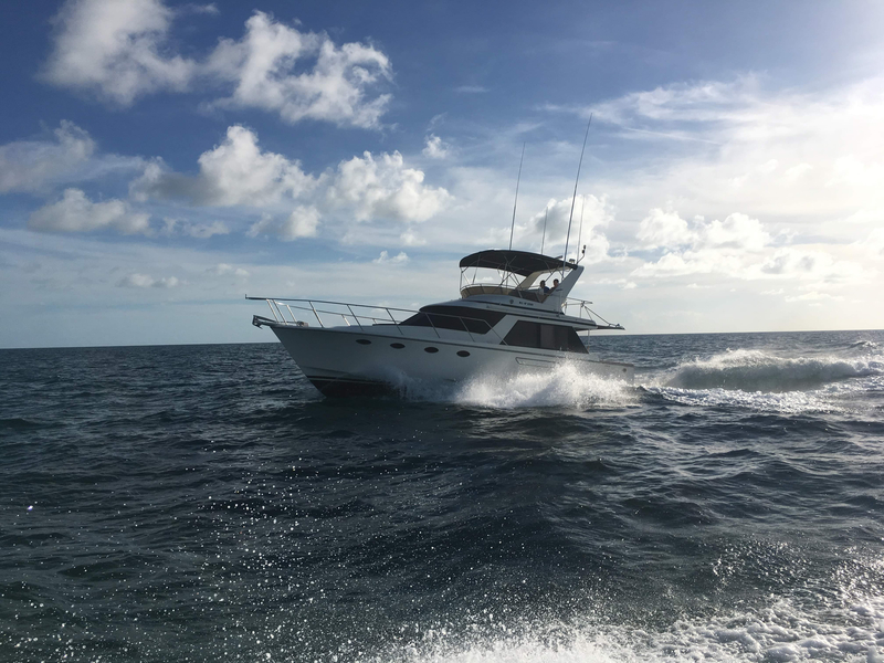 Ocean Alexander - 420 Sport Sedan