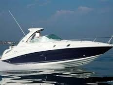 Sea Ray - 305 Sundancer