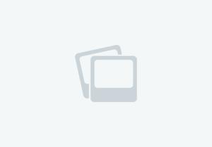 Corvette - 320